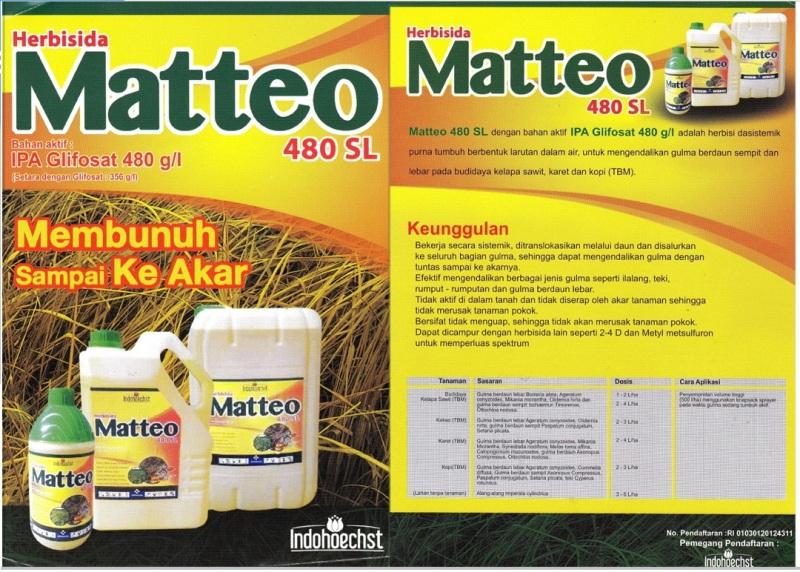 Matteo 480SL